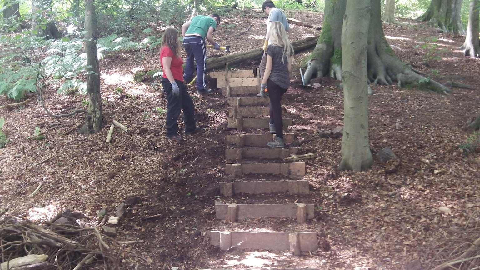 Young people building steps